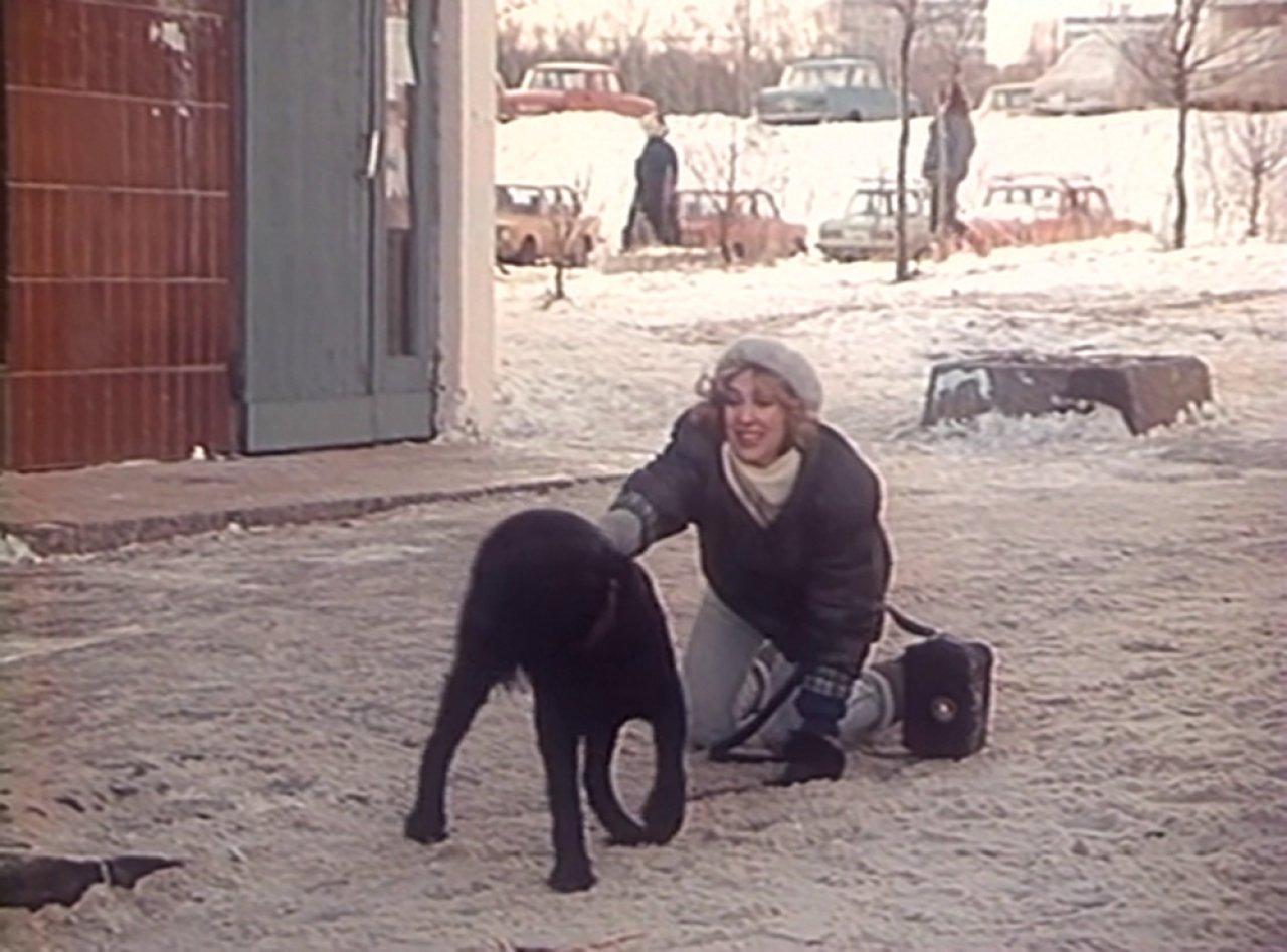 Воспитание жестокости у женщин и собак